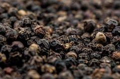 Micro av svarta pepparkorn Royaltyfria Bilder