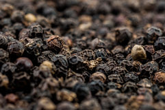 Micro of black peppercorns Royalty Free Stock Images