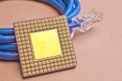 Micro chip dorato Fotografie Stock Libere da Diritti
