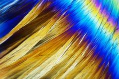 Micro cristalli Fotografie Stock Libere da Diritti