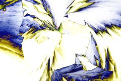 Microcrystals of tartaric acid in polarized light. Micro crystals of tartaric acid in polarized light Stock Photography