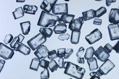 Micro dello zucchero Fotografia Stock