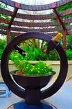 Micro giardino con il telescopio. Fotografie Stock