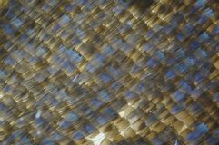 Micro photography of butterfly wing Stock Photography