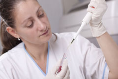 Micro pipette with blood Stock Image