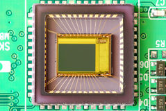 Micro sensor da imagem integrado na placa eletrônica Imagem de Stock Royalty Free