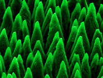 Micro-spikes on silicon. Picture of silicon micro-spikes produced by laser radiation royalty free stock photography
