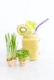 Micro verdes crescentes com o cocktail do batido no fundo branco Conceito saudável comer do produto fresco do jardim Foto de Stock Royalty Free