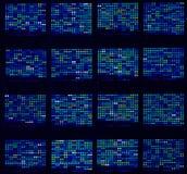 Microarrays do ADN Imagem de Stock