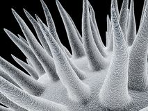 Microben royalty-vrije illustratie