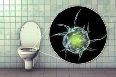 Microbes de toilette, transmission des infections diarrh?iques illustration libre de droits