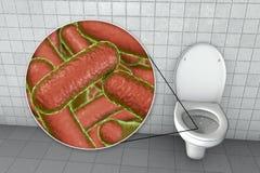 Microbes de toilette, transmission des infections diarrh?iques illustration de vecteur