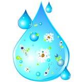 Microbi nella goccia di acqua sporca Immagini Stock Libere da Diritti