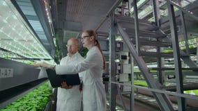 Microbiologi uomo e donna sulla produzione della coltura idroponica in camice, un uomo che tiene un computer portatile, mani di u stock footage