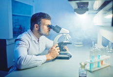 Microbiological research Royalty Free Stock Images
