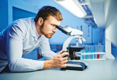 Microbiological research Royalty Free Stock Photography