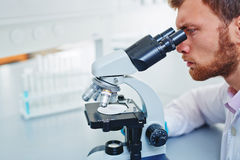 Microbiological research Stock Images