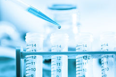 Microbiological test tubes Stock Images