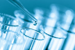 Microbiological test tubes pipette Stock Photo