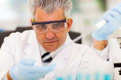 Microbiologie médicale de reseacher Image libre de droits