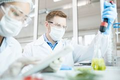 Microbiologist taking sample of solution in flask. Crop view of scientists in protective equipment sitting at desk in laboratory making research of green Stock Photos