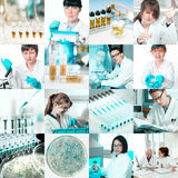 Microbiologists at work, collage Stock Photo