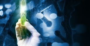 Microbiology concept royalty free stock image