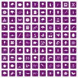 100 microbiology icons set grunge purple Stock Image