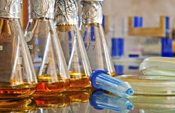Microbiology laboratory. Preparing culture media in microbiology laboratory Stock Image