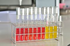 Microbiology laboratory test Royalty Free Stock Photos