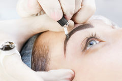 Microblading eyebrows workflow. In a beauty salon stock photo