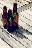 Microbrew - Flaschen und Hopfen lizenzfreie stockbilder