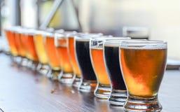 Microbrewery工艺啤酒品尝飞行 免版税库存照片