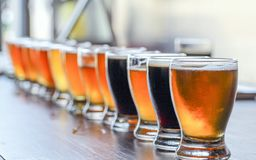 Microbrewery Craft Beer Tasting Flight. A Craft Beer Tasting Flight Sample of Many Beers Are On Display on a Bar Counter royalty free stock photo