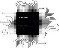 Microchip Royalty-vrije Stock Afbeeldingen