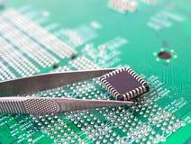 Microchip in the tweezers stock afbeelding