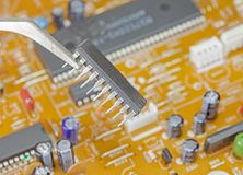 Microchip with tweezers. On background circuit board Stock Image
