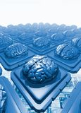 Microchips with brains Stock Images