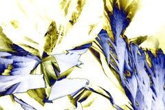 Microcrystals del ácido tartárico en luz polarizada foto de archivo