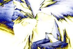 Microcrystals del ácido tartárico en luz polarizada fotografía de archivo