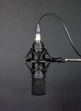 Microfone 1 Foto de Stock