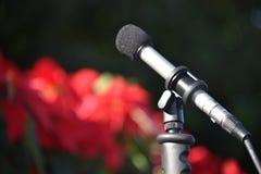 Microfone Angeled ascendente Imagens de Stock