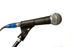 Microfone do concerto Imagens de Stock Royalty Free