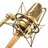 Microfone do profissional do ouro Fotos de Stock