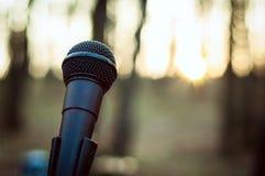 Microfone próximo acima na floresta no por do sol imagem de stock