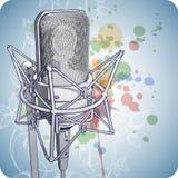 Microfone profissional Fotografia de Stock Royalty Free