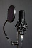 Microfono 1 Fotografie Stock Libere da Diritti