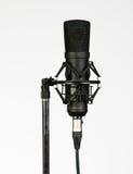 Microfono 1 Immagini Stock Libere da Diritti