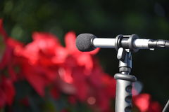 Microfono all'aperto che indica a sinistra Fotografie Stock