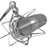 Microfono professionale Immagine Stock Libera da Diritti